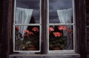 Erkki Perkiömäki - Ikkuna