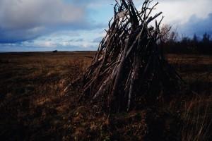 Erkki Perkiömäki - Puukasa