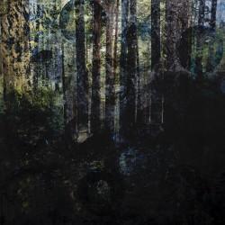 Siirtymä – Holmlund Christina