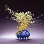Ikebana-näyttely
