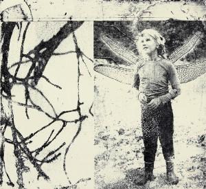 Aino Toivettula - Natures miracle