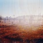 Terhi Asumaniemi – Maa suon syvässä sylissä